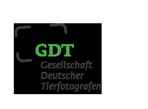 logo GDT