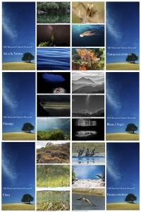 expocartell-página002_Fotor_Collage-2 txt